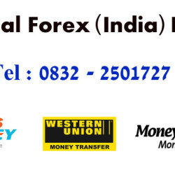 National Forex India Pvt. Ltd.